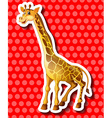 Cute giraffe on red background vector image vector image