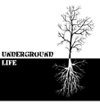 background with tree and roots vector image