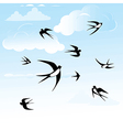 Bird swallow in sky vector image vector image