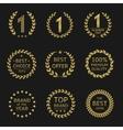 Award symbols vector image