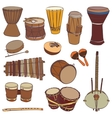 African traditional musical instruments vector image