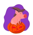 Pig in the gourd vector image