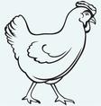 Figure chicken vector image vector image