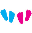 child feet silhouette vector image vector image