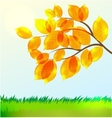 landscape with Autumn leaves vector image