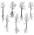 set of different winter trees and roots vector image