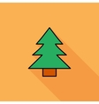 Conifer vector image vector image
