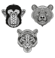 Zentangle stylized Tiger Monkey Bear faces Hand vector image vector image