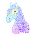 hand drawn head of horse vector image