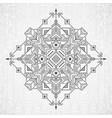 native ethnic ornament vector image