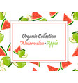 sweet juicy slice of watermelon and green apple vector image