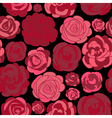 Pattern with red roses on black vector image