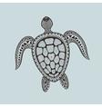 Zentangle stylized turtle Hand Drawn aquatic vector image