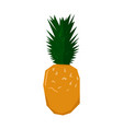 isolated geometric pineapple vector image