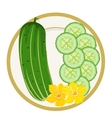 Cucumbers on a plate vector image vector image