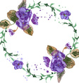 Watercolor of Violet Flowers vector image