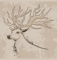 Sketch of a deer head with antlers vector image