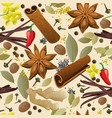 seamless pattern with different spices vector image vector image