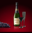 two glasses of champagne with bottle and grapes vector image