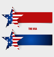 American Flag Flags concept design vector image