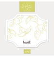 Product sticker with hand drawn basil leaves vector image