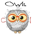 Cute Owl isolated on a white background vector image