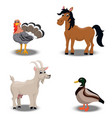 farm animals collection vector image