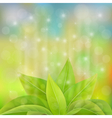 green leaves sprout in a magical light vector image