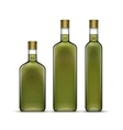 Set of Olive Oil Glass Bottles Isolated vector image