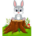 cartoon easter bunny on tree stump vector image