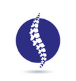 human spine isolated silhouette vector image