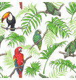 parrots toucan and palm leaves pattern vector image