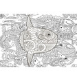 high detailed moon fish vector image