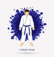 karate suit with blue martial arts belts vector image
