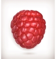 Raspberry high quality vector image vector image