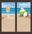 Coconut Cocktail Backdrop vector image