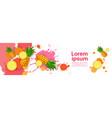 abstract paint splash and fruits pineapple set vector image