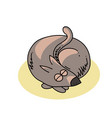 curled up dog vector image