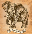 elephant stylized engraving vector image