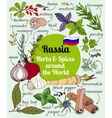 Russian herbs and spices vector image
