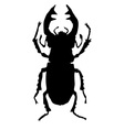 silhouette of stag-beetle vector image vector image