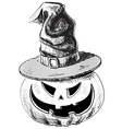 Halloween pumpkin in magic witch hat vector image vector image