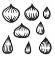 Hand Drawn Onion Set vector image