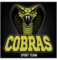 cobras green banner design colorful vector image