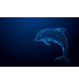 wireframe dolphin mesh from a starry background vector image