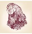 chicken vintage hand drawn vector image