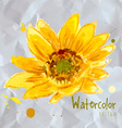 The composition of yellow sunflower vector image
