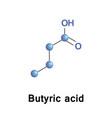 butyric acid or butanoic vector image