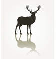 Deer animal silhouette vector image