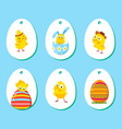 Set of labels with funny easter chickens vector image